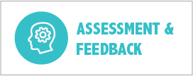 Assessment and Feedback Button