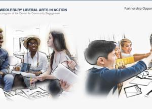 Screenshot of MLAA website homepage